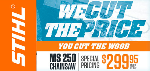 STIHL MS 250 Chainsaw | October Special