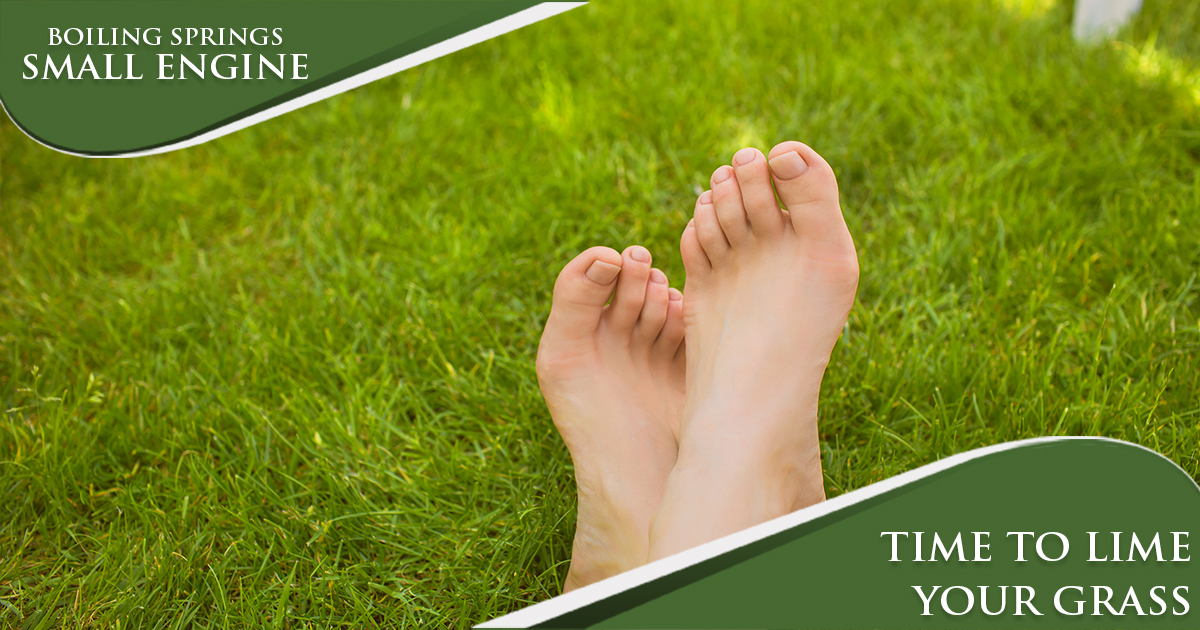 March Tip – Time To Lime Your Grass