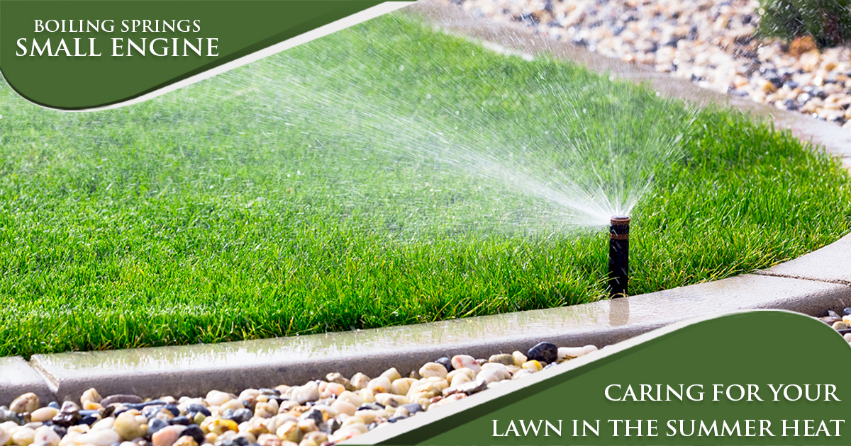 July Tip – Caring for your Lawn in the Summer Heat