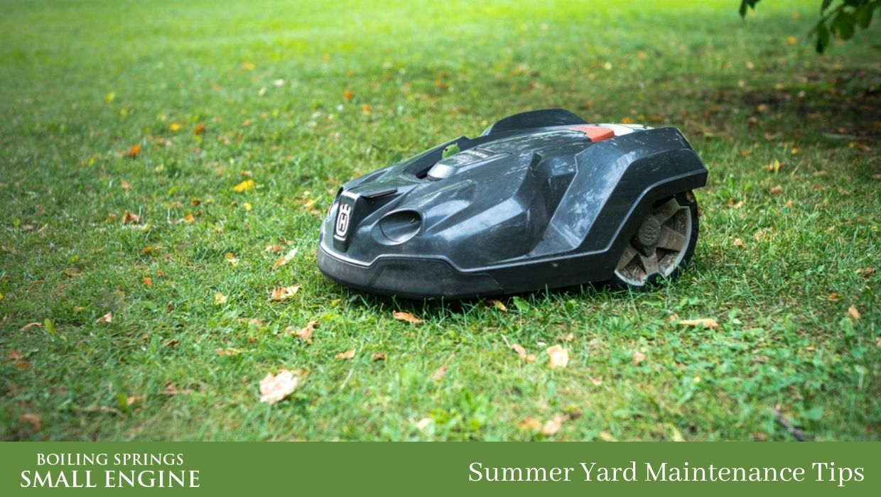 Summer Yard Maintenance